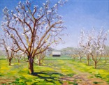 """Peach Blossoms Orchard"" by Daphne Wynne Nixon, 2005"