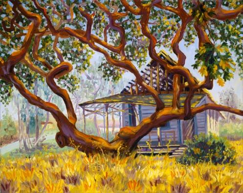 Green Valley School, 2004 by Daphne Wynne Nixon